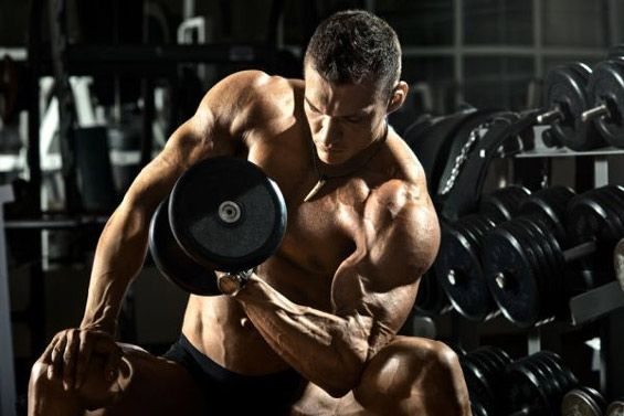 Curl biceps musculation