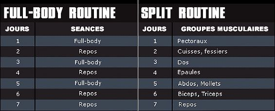 Split ou full-body