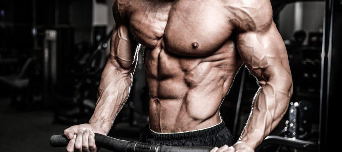 Boosters de testostérone musculation