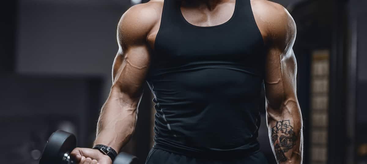 Construire son programme de musculation