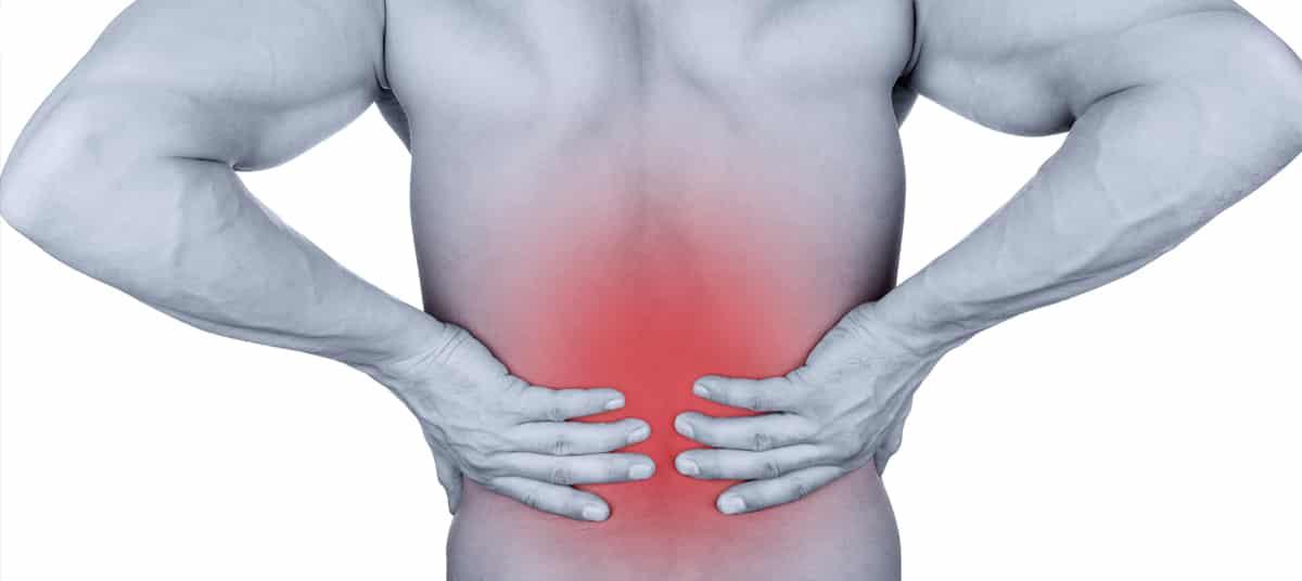 Exercices de musculation pour renforcer ses lombaires