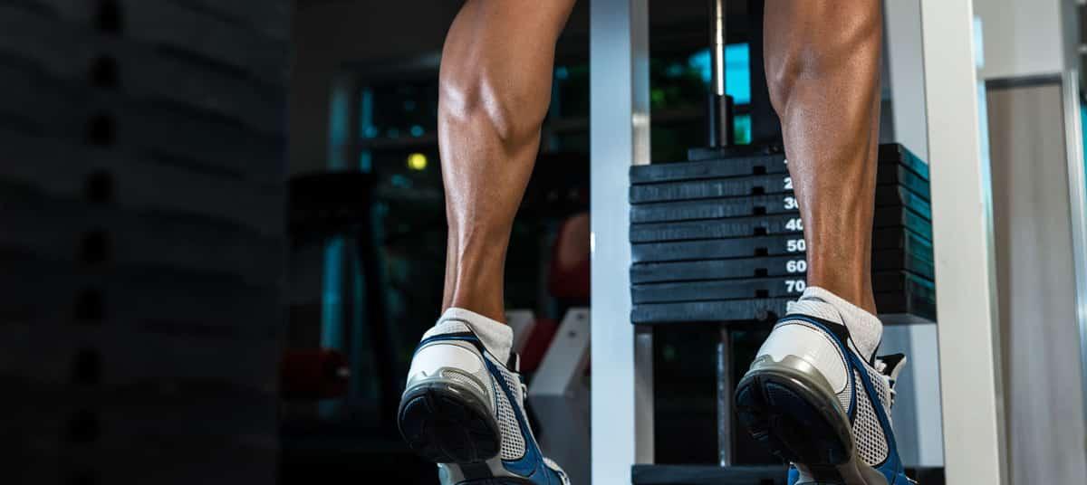 Musculation des mollets