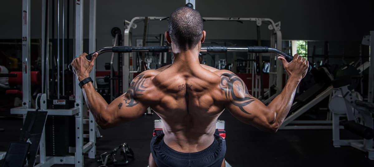 Programme de musculation Full-Body ou Split
