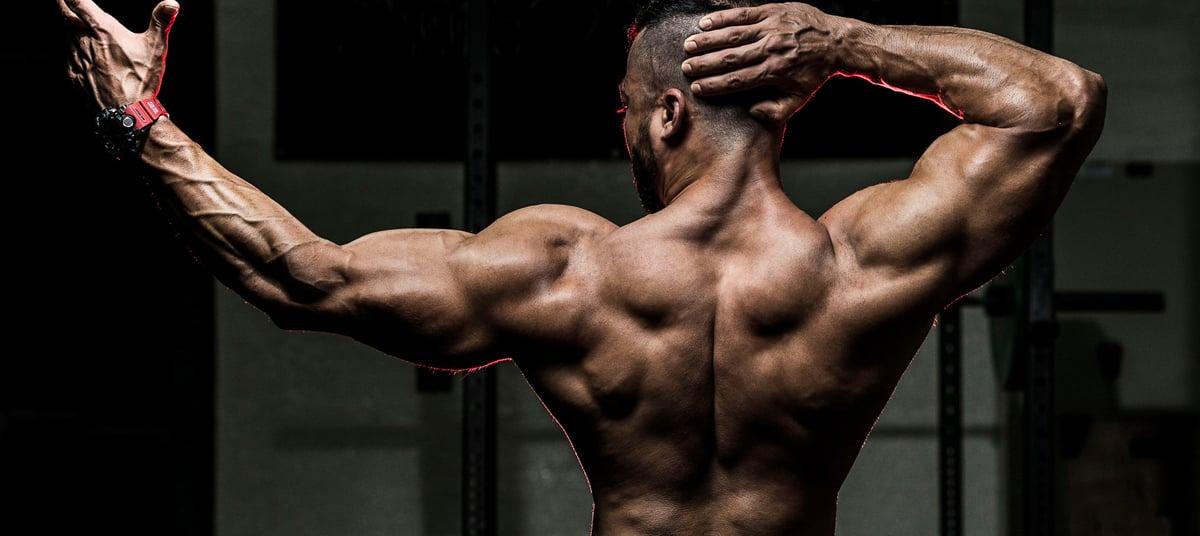 Programme de musculation pour avoir une ligne musclée