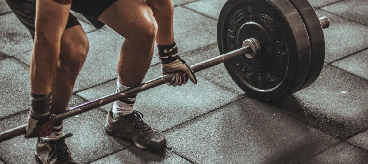 Programme musculation basique