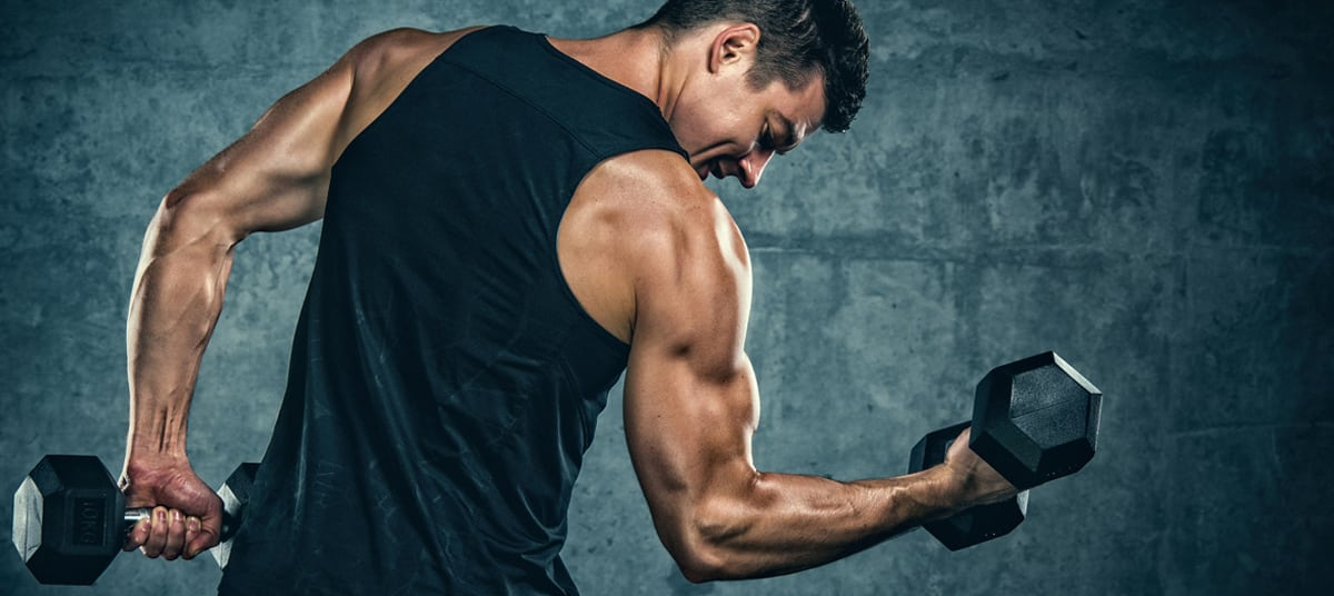 Programme musculation split