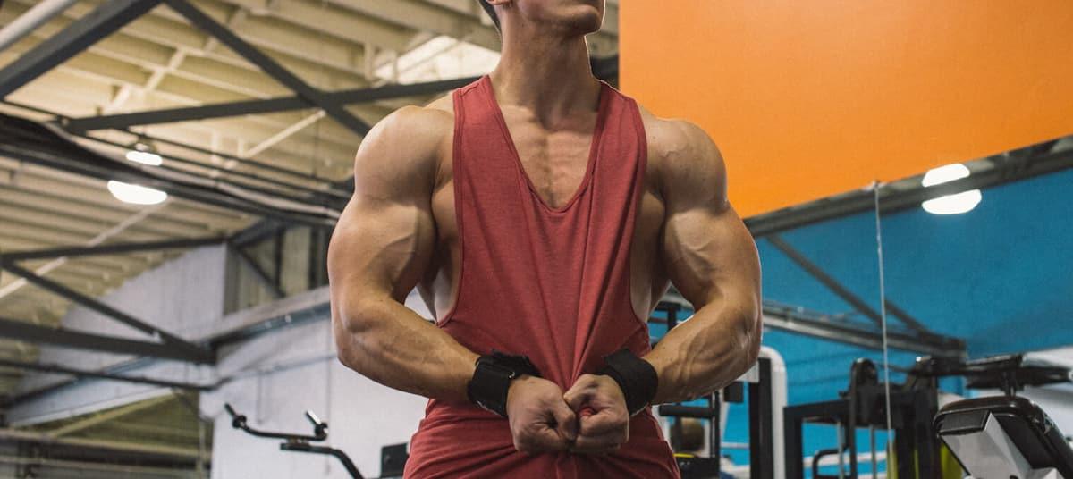 Quand changer son programme de musculation
