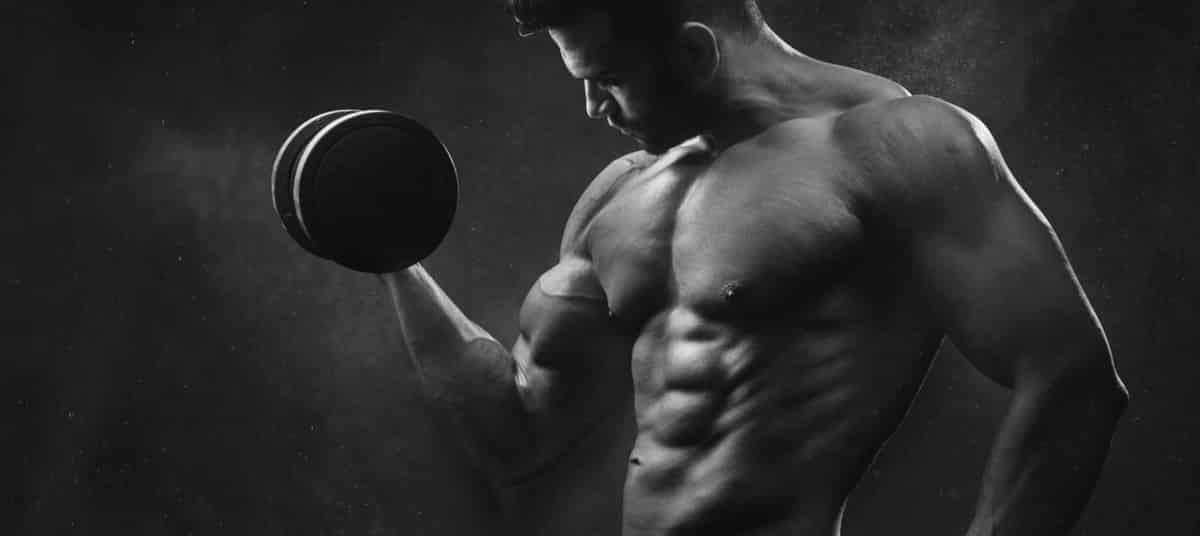conseils pour débutants en musculation