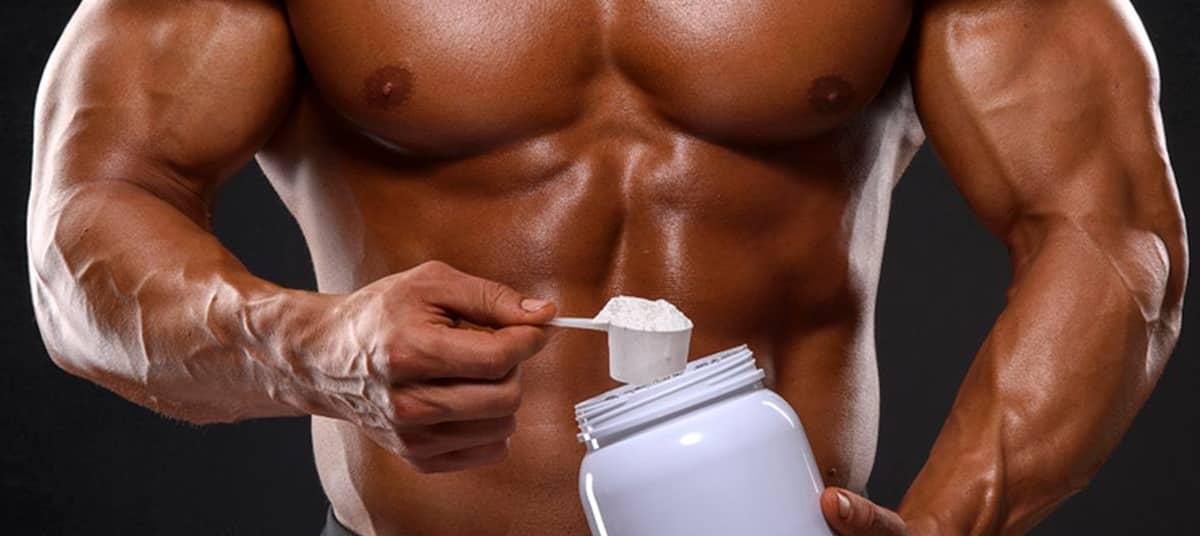 créatine pour la musculation