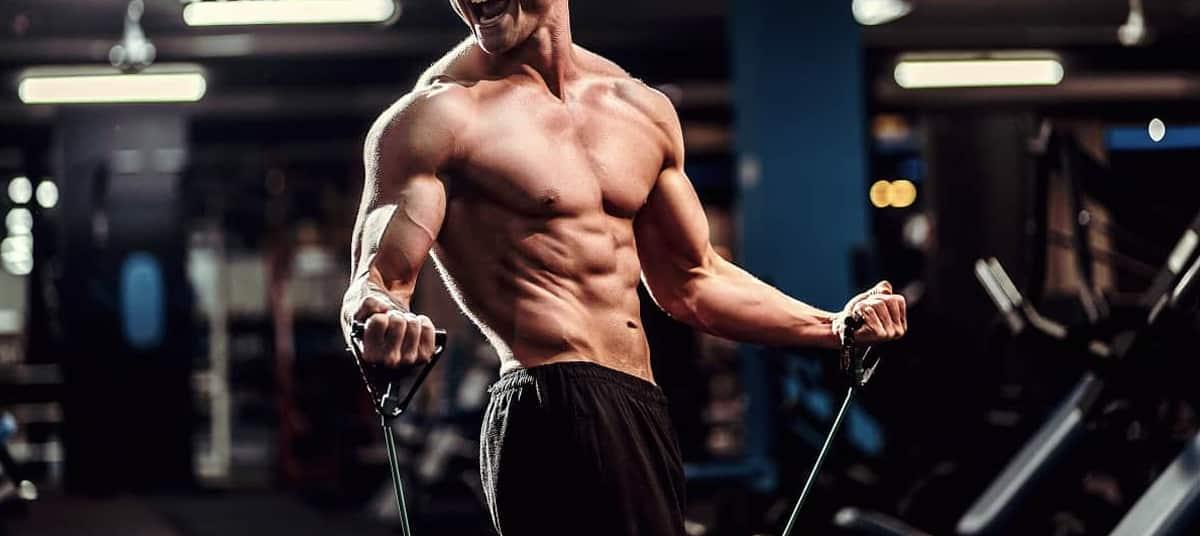 entrainement de musculation avec bandes élastiques
