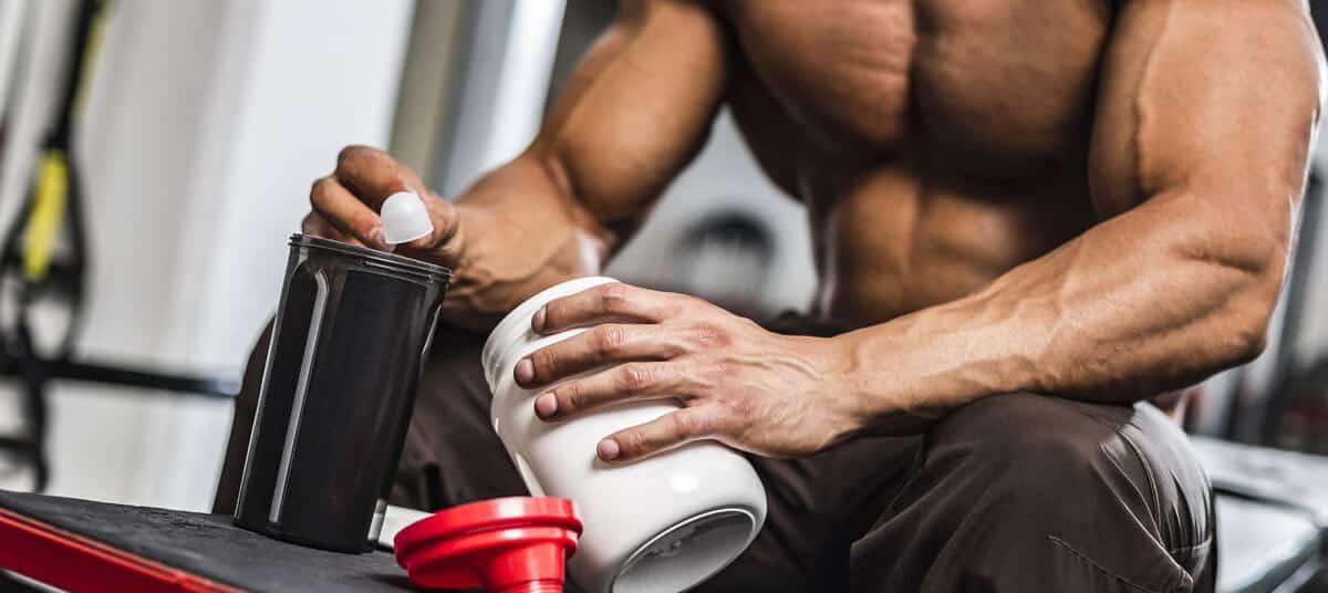 glutamine en musculation