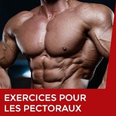 Exercices pour les pectoraux