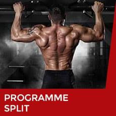 programme de musculation split