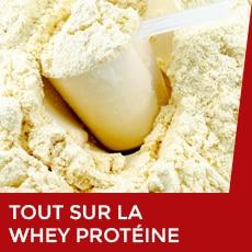 tout sur la whey protéine